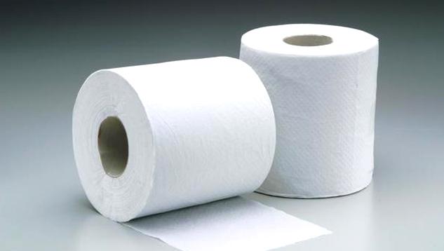 Common Drain Cloggers - Excessive Toilet Paper